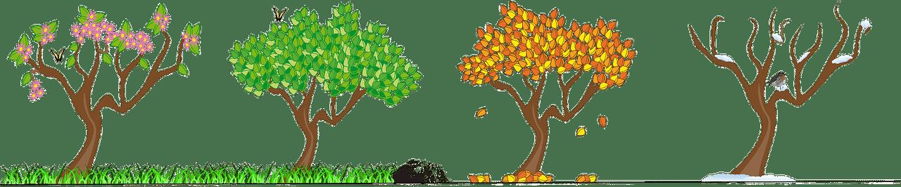 Die vier Jahreszeiten erfordern individuelle Pflege und Arbeit
