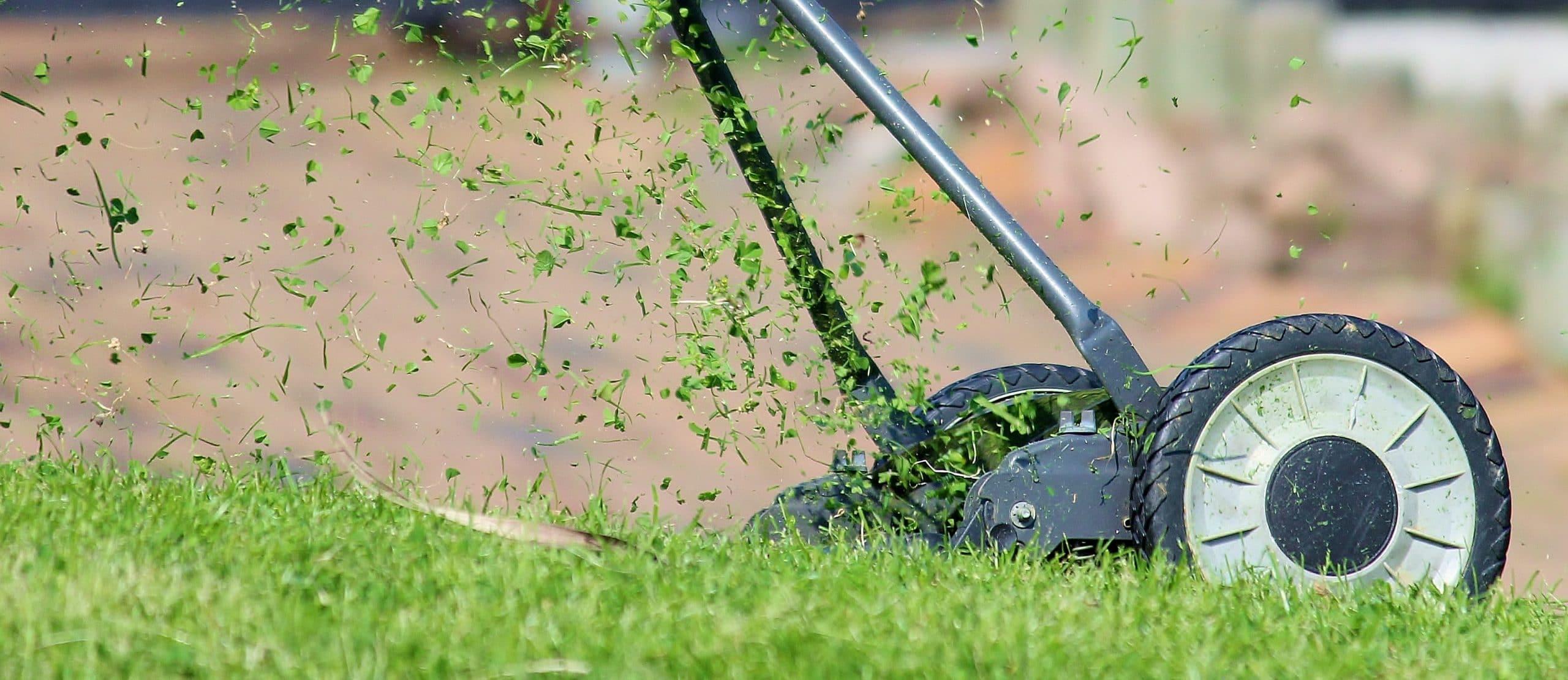 Ihr Hausmeisterservice in Wachtberg. Wir kümmern uns um Ihre Gartenpflege und jegliche Hausmeistertätigkeiten