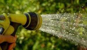 Bei der Gartenpflege kümmern wir uns um Ihre Pflanzen